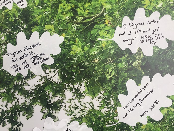 Alumni write their memorable U of T moments on an oak leaf and post it on a wall featuring the image of an oak tree. Special memories of U of T days. Photo by Ashley Meehan.