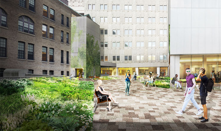 Planned view of the Medical Sciences Building courtyard