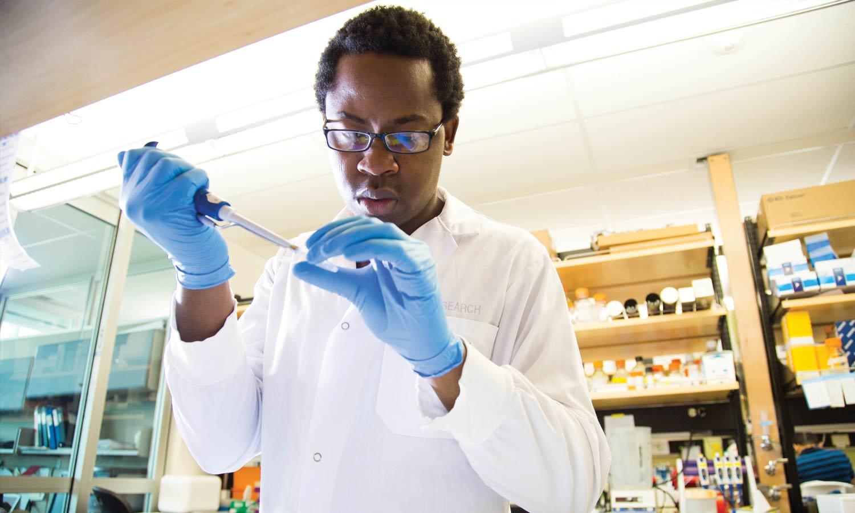 World-class research – a hallmark of FMIHD
