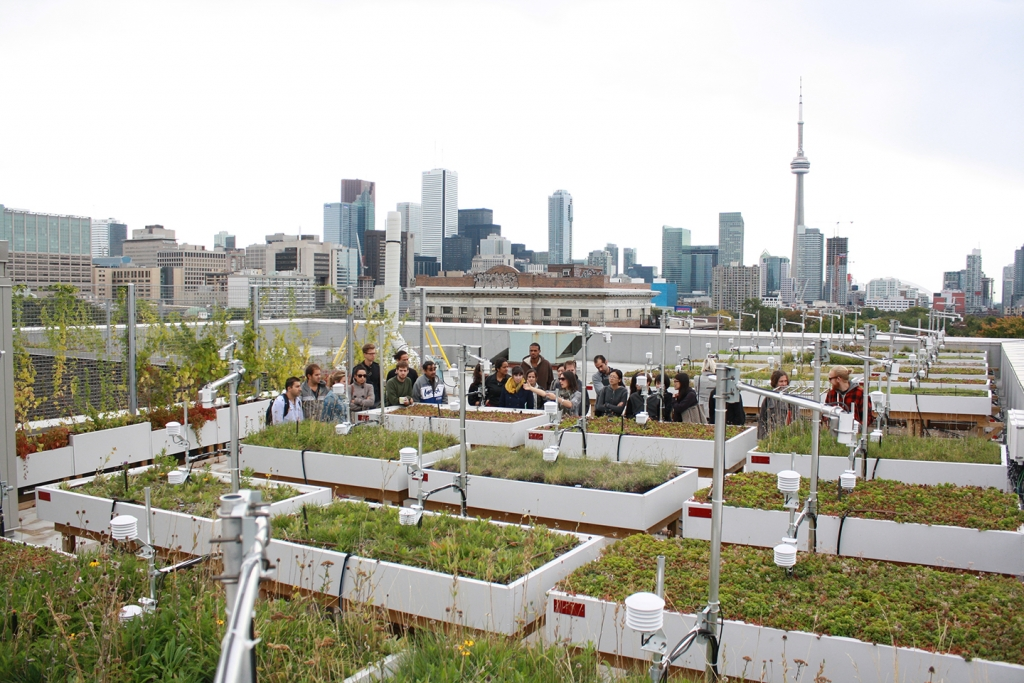 One Spadina Green Roof Innovation Testing Lab (GRIT)