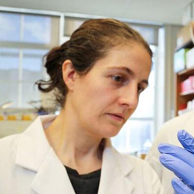 Professor Alison McGuigan