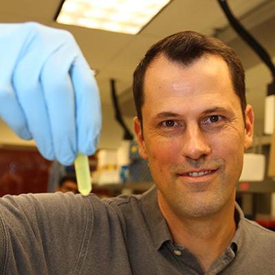 Professor Jonathan Rocheleau