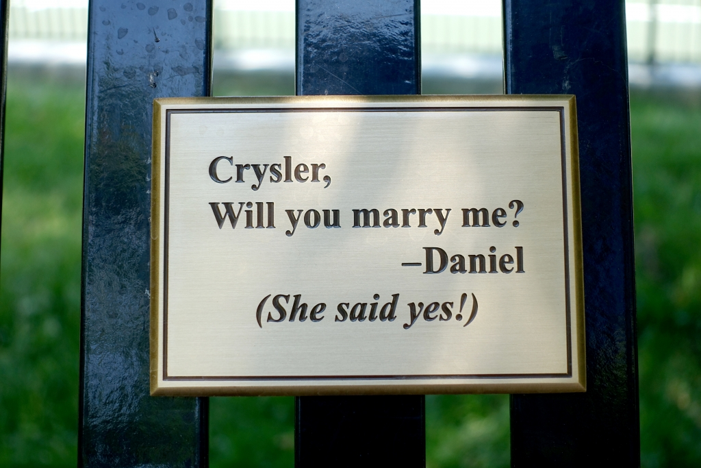 Marriage_proposal_answer_plack_on_U_of_T_bench